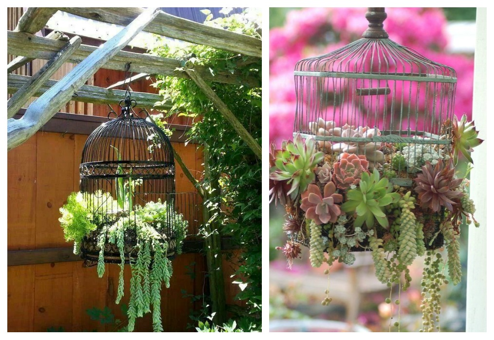 Diy maceteros colgantes ecodeco mobiliario for Plantas colgantes exterior sol