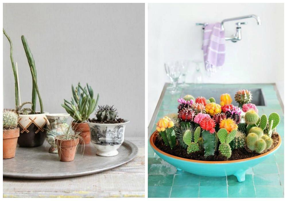 Decorar con cactus ecodeco mobiliario for Budas grandes para jardin