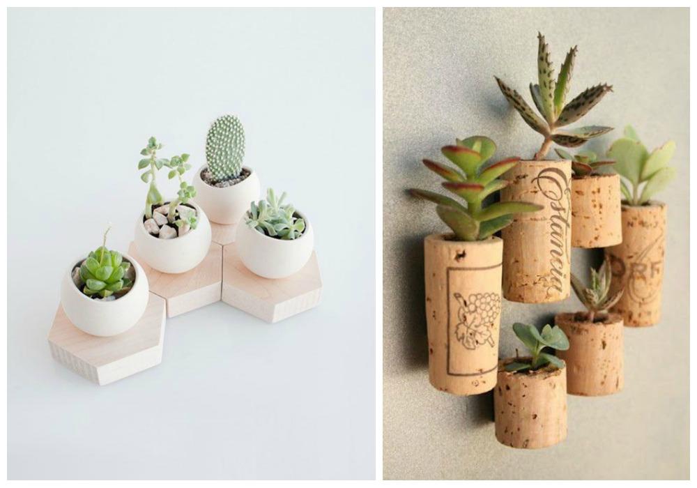 Decorar con cactus ecodeco mobiliario for Decoracion con plantas suculentas